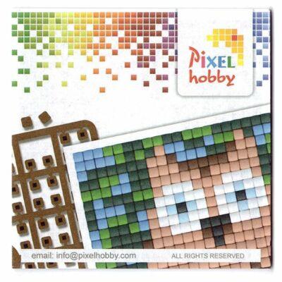 Pixelhobby ötletfüzet kis alaplaphoz (Bagoly)