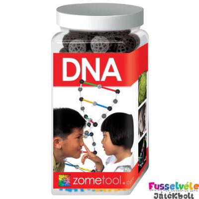 Zometool, DNA/DNS molekula (Tudományos építőjáték, 6-99 év)